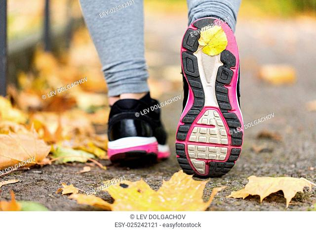 fitness, sport, people, footwear and healthy lifestyle concept - close up of young woman running in sneakers at autumn park