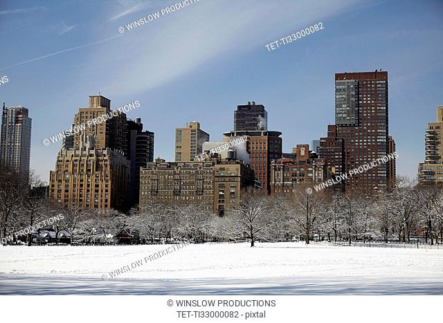 View of Central Park at winter