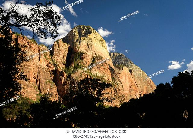 Zion National Park, located in the Southwestern United States, near Springdale, Utah