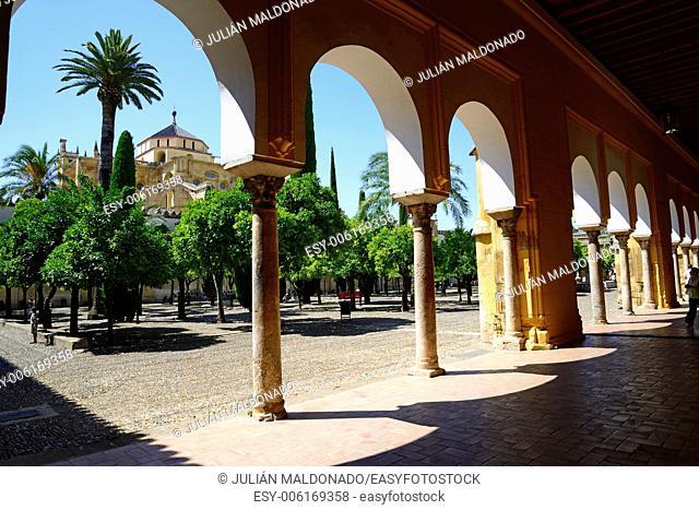 Patio de los Naranjos in the Catedral de Córdoba, Andalucía, Spain