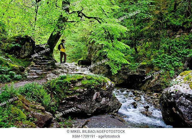 Kakueta gorges  Sainte-Engrace  Pyrénées-Atlantiques, France