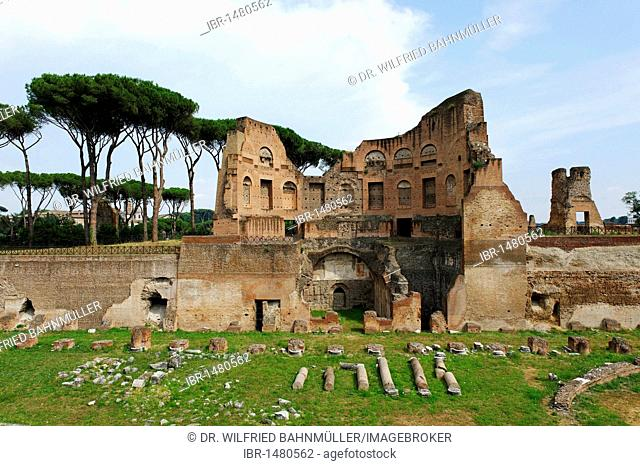 Palatine Hill, Stadio Palatino in the Domus Augustana part of the Palace of Domitian, ancient Rome, Rome, Lazio, Italy, Europe
