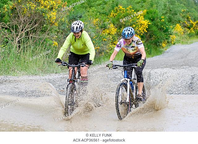 Two mid adult women laugh while biking through a puddle near Powell river, on the upper Sunshine coast of the Vancouver coast and mountain region