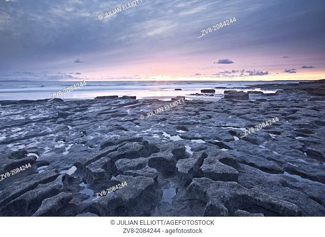 The wavecut platform at Dunraven Bay looking like a lifesize jigsaw puzzle. The bay is on the Glamorgan Heritage Coastline in Wales