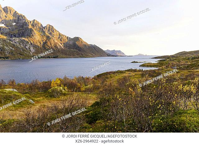 Austnesfjorden, Island of Austvågøy, Lofoten archipelago, county of Nordland, Norway, Europe