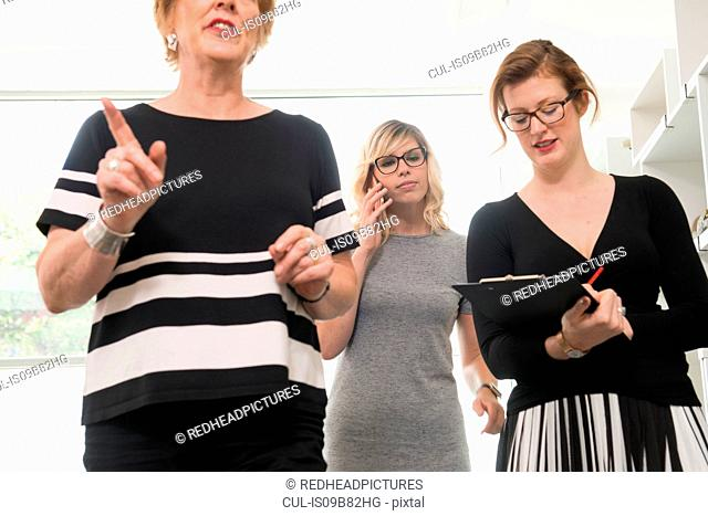 Businesswoman talking, colleague writing notes