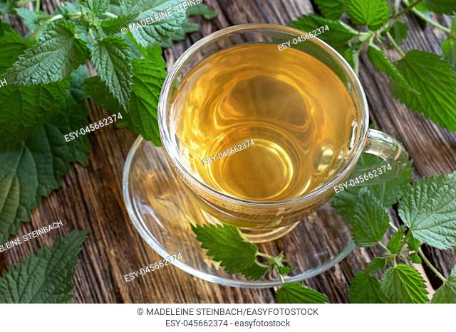 A cup of nettle tea with fresh plant on a rustic background
