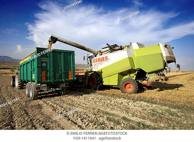 Combine-harvester unloading wheat into a tow
