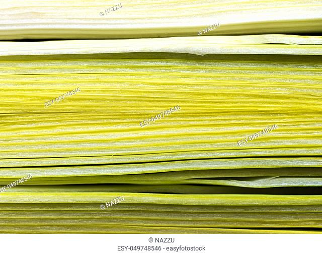 Cross section of a leek Stock Photos and Images | age fotostock