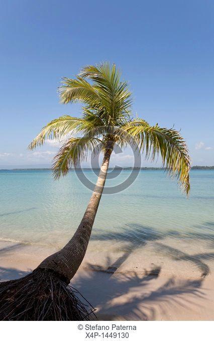 Boca Del Drago Beach, Isla Colon, Bocas Del Toro, Panama