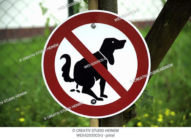 No dogs toilette