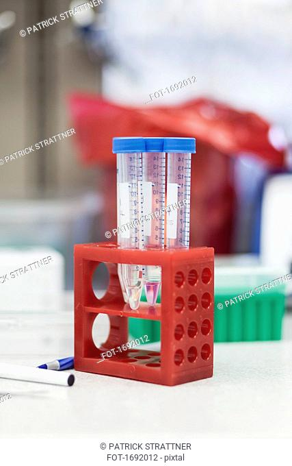 Test tubes in red rack on table at laboratory