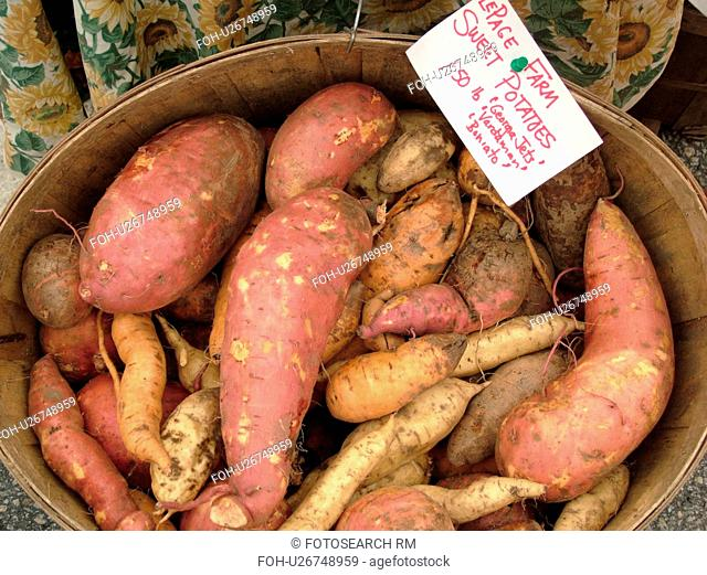 Montpelier, VT, Vermont, Farmer's Market, Sweet Potatoes