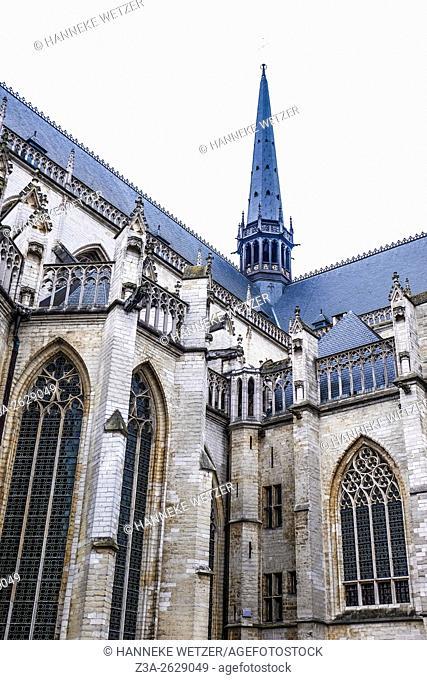Church Sint-Pieter, Leuven, Belgium, Europe