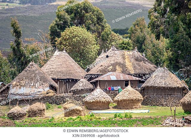 Straw thatched huts in the villages outside of Debre Berhan, Ethiopia