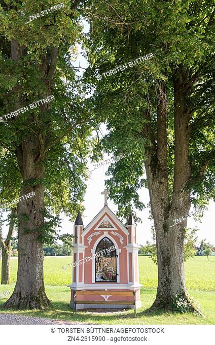 Christian Wayside Shrine between Trees in Rural Hausruck Region, Austria