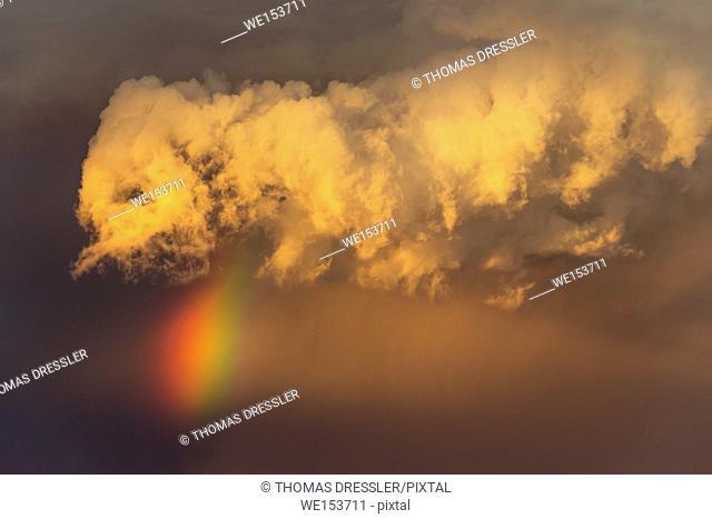 Evening thunderstorm with Cumulonimbus cloud and rainbow with tail. During the rainy season. Kalahari Desert, Kgalagadi Transfrontier Park, South Africa