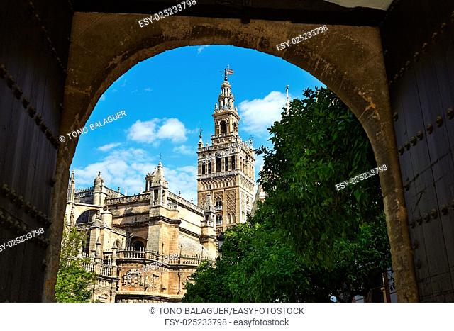 Seville cathedral Giralda tower from Alcazar arch door of Sevilla Andalusia Spain