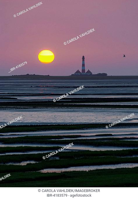 Westerhever Lighthouse at sunset behind Tümlau Bay, Tümlauer-Koog, Westerheversand, Schleswig-Holstein, Germany