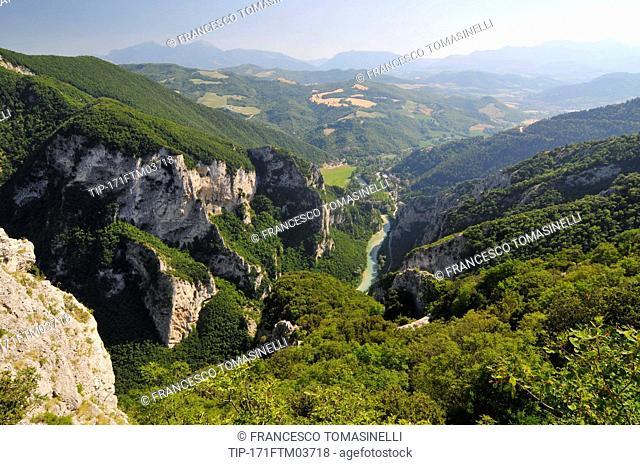 Italy, Marche, Gola del Furlo, Canyon Furlo Gorge