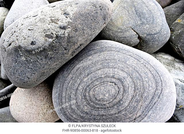 Close-up of boulders on shore, Fair Isle, Shetland Islands, Scotland, june