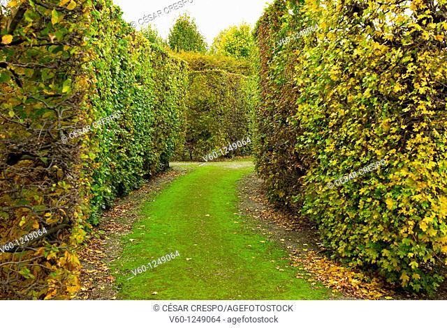 -Gardens- Wien (Austria)