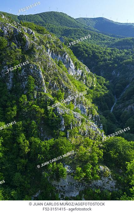Arantzazu ravine, PARQUE NATURAL DE AIZKORRI-ARATZ, AIZKORRI-ARATZ NATURAL PARK, Arantzazu, Oñati municipality, Gipuzkoa, Basque Country, Spain, Europe