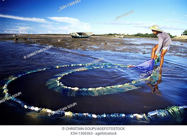 net fishing of alvines, Sumba island, Lesser Sunda Islands, Republic of Indonesia, Southeast Asia and Oceania