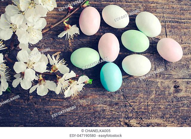 Easter eggs painted in pastel colors with spring cherry blossom on old rustic wooden background with empty place for text. Happy Easter Holidays