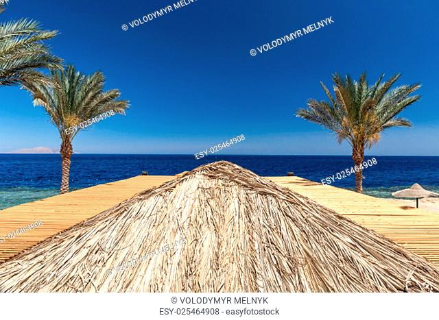 The beach at the luxury hotel, Sharm el Sheikh, Egypt. top view of the wooden roof
