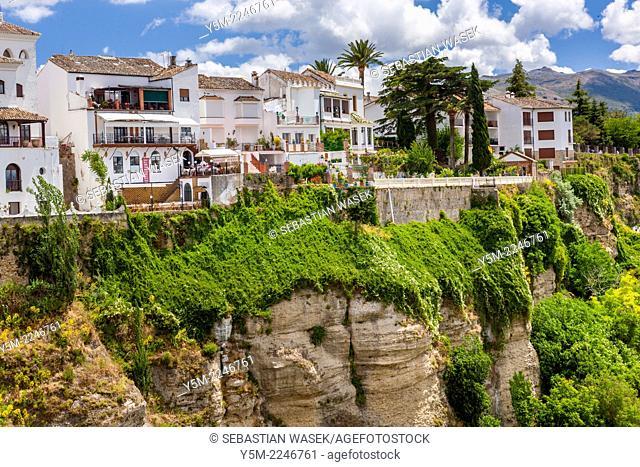 Houses on Edge of El Tajo gorge, Ronda, Malaga province, Andalusia, Spain, Europe