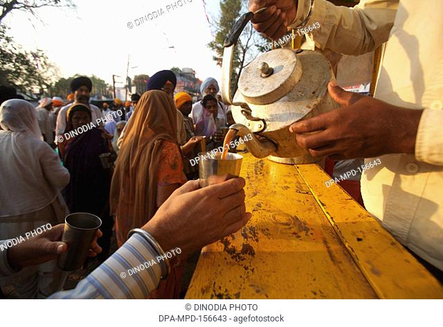 Tea being served to the devotees in the in the compound of Sachkhand Saheb Gurudwara in Nanded ; Maharashtra ; India