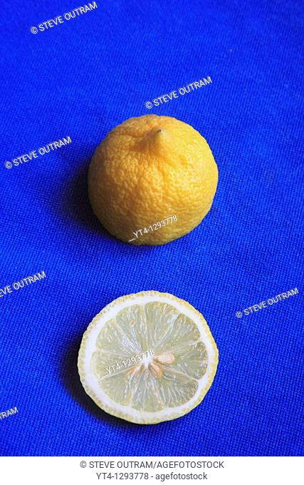 A Slice of Lemon
