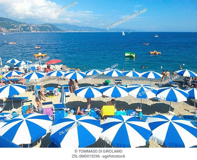 Italy, Liguria, Santa Margherita Ligure, Beach Umbrellas