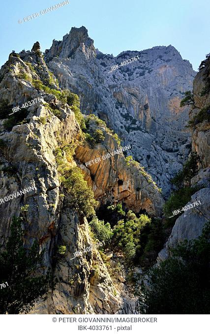 Steep cliffs in the Gola Gorropu gorge, Gennargentu National Park, Supramonte, Province of Nuoro, Sardinia, Italy