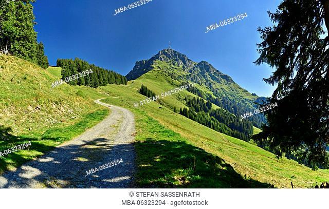 Path with Kitzbüheler Horn (mountain)