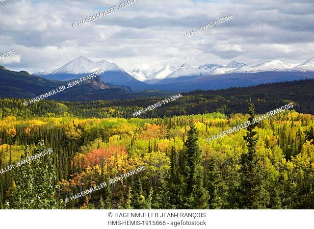 United States, Alaska, Denali National Park, fall colors from George Parks Highway