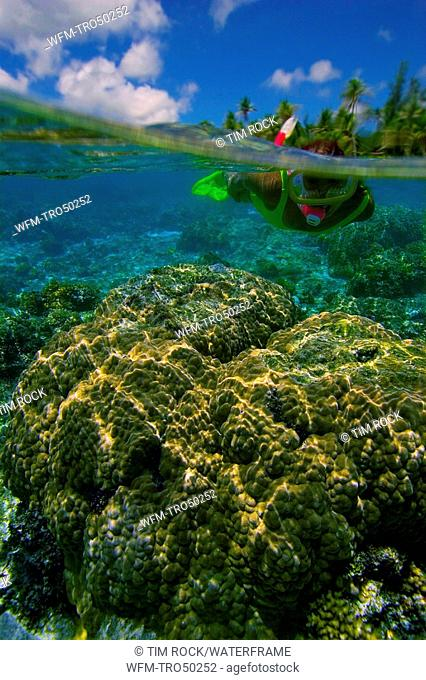 Corals in Lagoon and Skin Diver, Pacific Ocean, Rota, Northern Mariana Islands CNMI