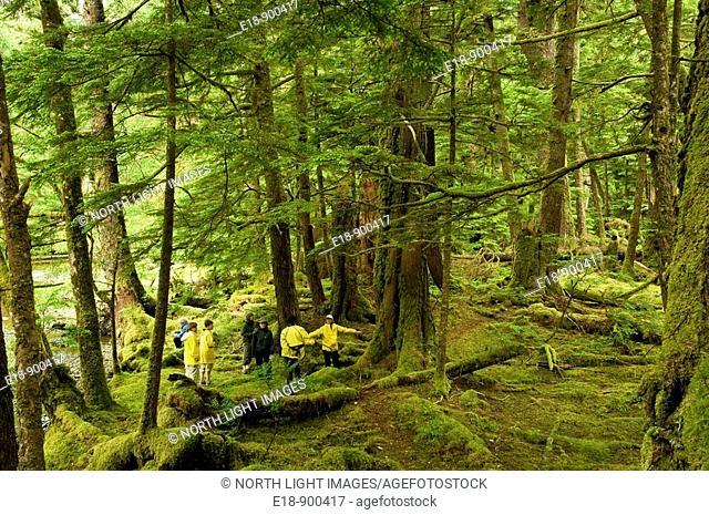 Canada, BC, Queen Charlotte Islands, Gwaii Haanas National Park, Windy Bay, 'hlk'yah Llnagaay'.  Group of visitors tour the remains of Haida village