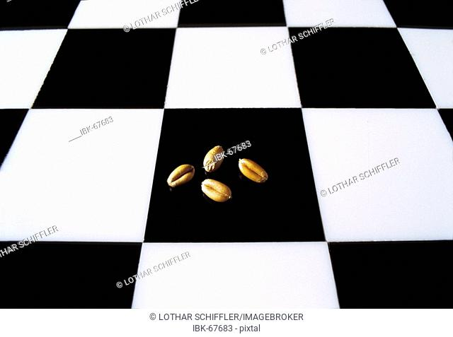 Chess board (checkerboard, cequerboard) with four grains of wheat. Story (legend) of the Indian king Shihram and the wise man Sissa bin Dahir