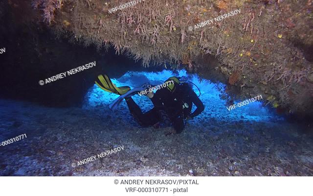 Scuba diver swims under coral arch - Red Sea, Marsa Alam, Egypt