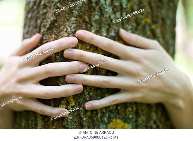 Woman's hands embracing tree