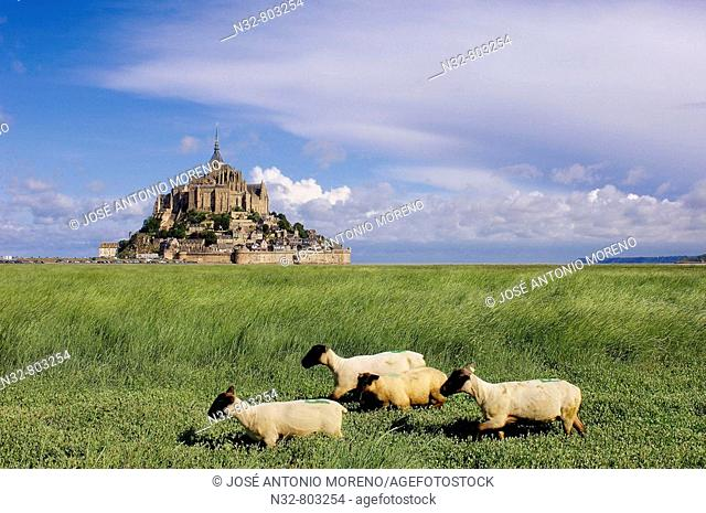 Mont-Saint-Michel Benedictine abbey  Normandy  France