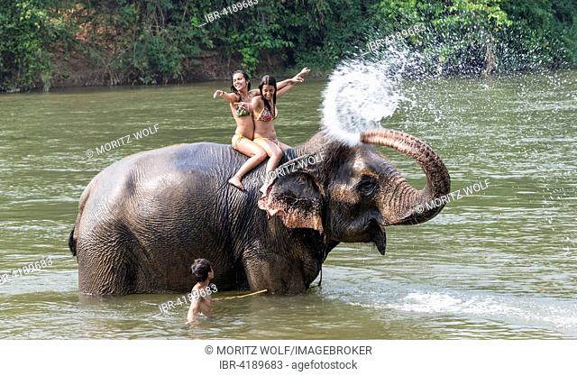Elephant spraying two tourists with water, Kanchanaburi Province, Central Thailand, Thailand
