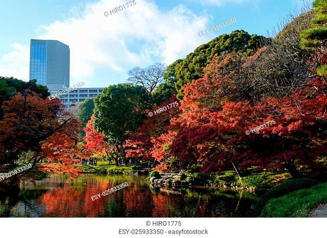 The Koishikawa Korakuen Garden is one of Tokyo's oldest and best Japanese gardens. The garden is attractive throughout the year