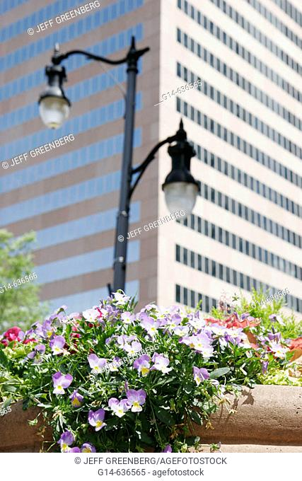 Downtown, flowers, office building. Birmingham. Alabama. USA