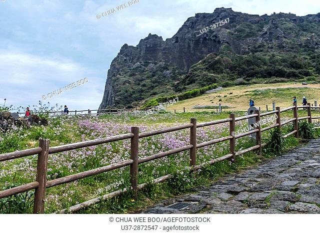 Secluded beach on the slopes of Ilchulbong volcanic cone, Jeju-Do, South Korea