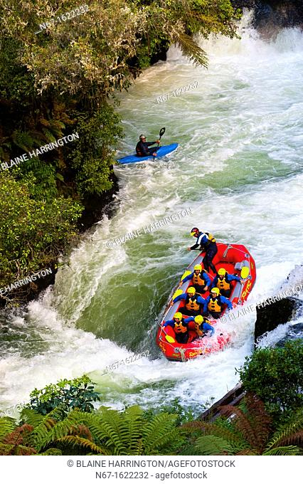 Whitewater rafting on the Kaituna River with River Rats Rafting, near Rotorua on the north island of New Zealand