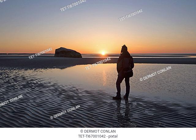 USA, Massachusetts, Cape Cod, Orleans, Man watching sunset at low tide