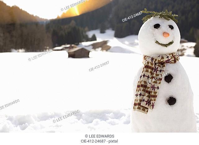 Snowman in sunny field